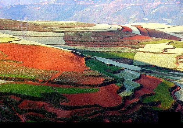 حقول زراعيه في الصين 66f72da9e1b09270e26af87cf4d94e48