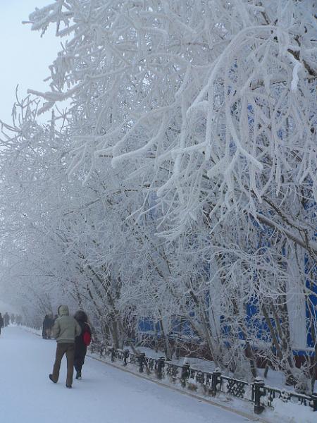 مدينة ياكوتسك أبرد مدينه في العالم 76c46b0df618e1d099a5c37e87db031a