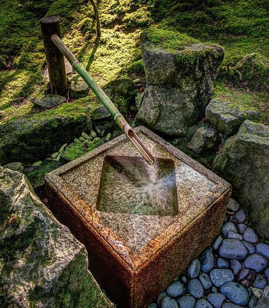 حدائق بورتلاند  اليابانية 8d9abb1fe12ba1f93cf2f160649cfe74