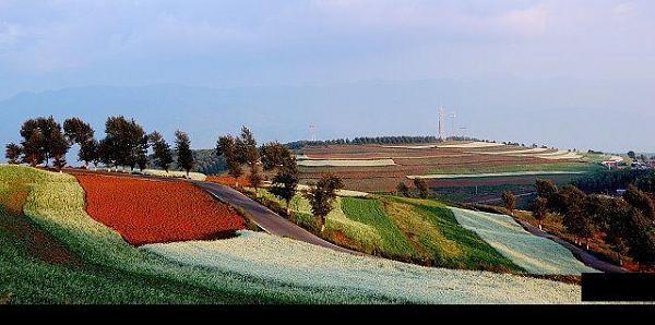 حقول زراعيه في الصين Ae8801d8256fe660b0f6037a25801866