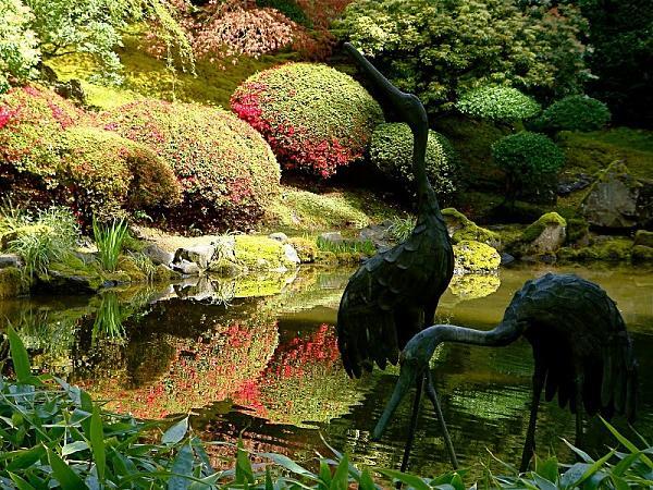 حدائق بورتلاند  اليابانية E3b12a8d8f5f0a7b965c0aec65d58500