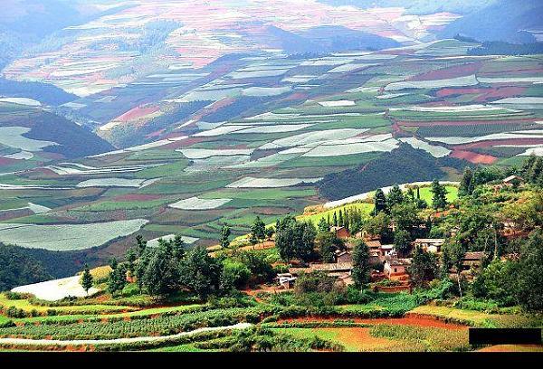 حقول زراعيه في الصين F5994b2755fedd6f329fb704039c46f2