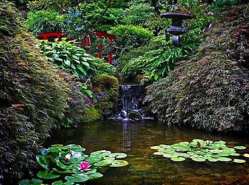 حدائق.اسبانيا.جنة اللة في الارض 7417_01241519534