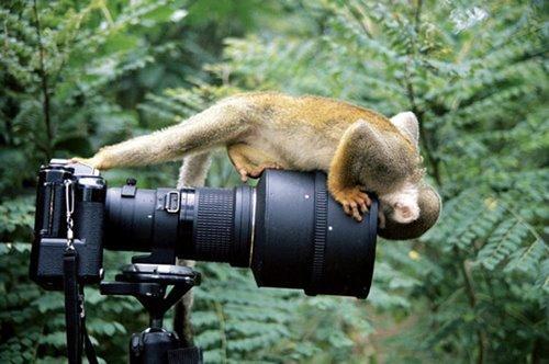 صور طبيعية جميل جدا (سبحان الله ) 169438_01256488755