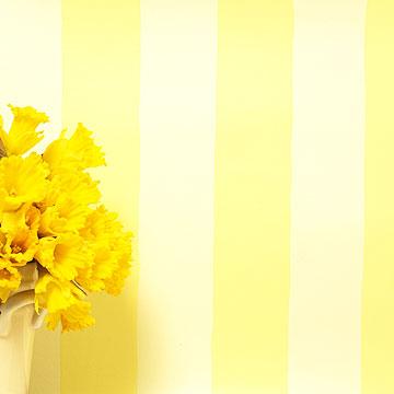 خلفيات باللون الاصفر صور جمیله باللون الاصفر