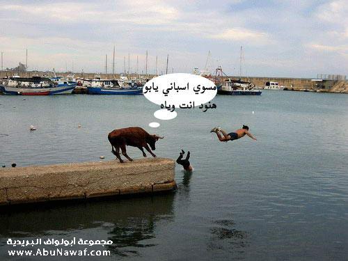 صـــــــــــور مضحكة جديدة 557497_01263783747