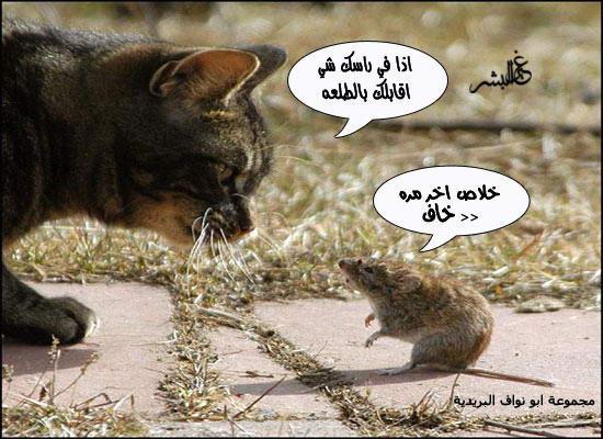 صـــــــــــور مضحكة جديدة 557497_01263783825