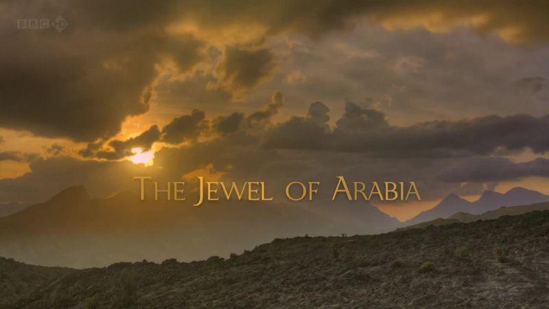 BBC - Wild Arabia (2013) Alexander Siddig Wildarabia02