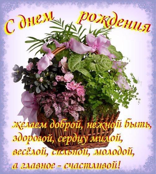 Поздравляем с Днем Рождения Елену (Елена Некрасова) 4e3f421b2d2af25ef4b7776fb40636ab