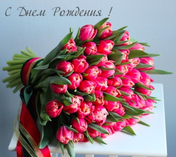 Поздравляем с Днем Рождения Светлану (Zorzy) 53f6766183464a66579856dd4e29b925