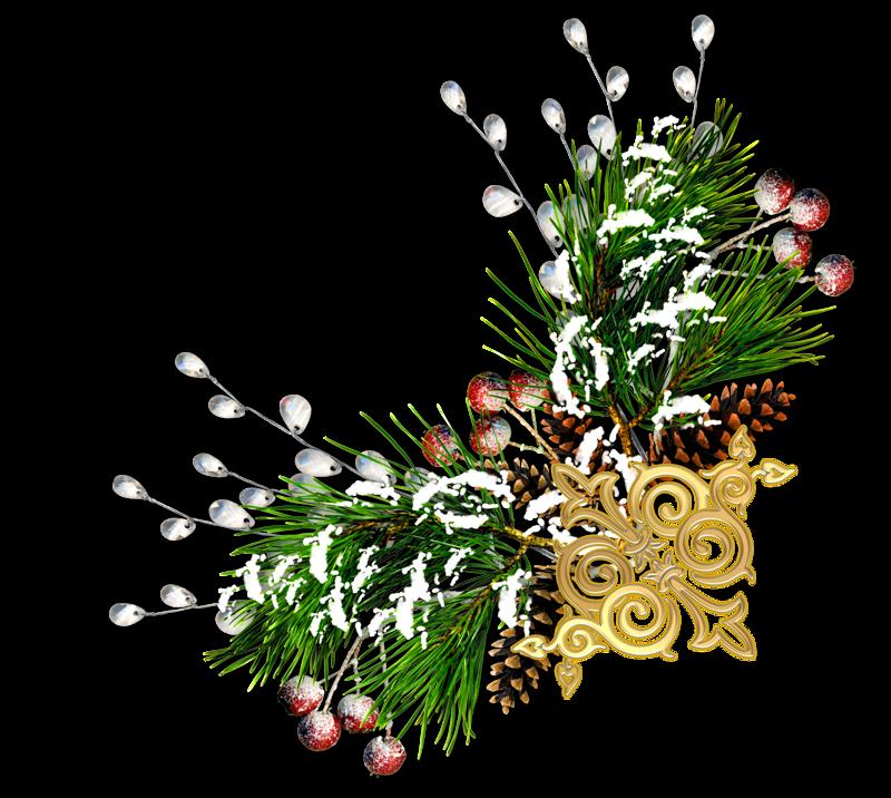 Гранд Канис Аниксия Мосдорм и Голден Бест Жордан Бои( Ника+Жорик+Ирина) 8e73802f59c1c0501772233bcbc9b057
