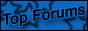 The Top 100 Forums