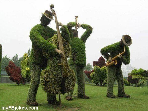 smesne slike 1_174122451_Interesting-Horticulture