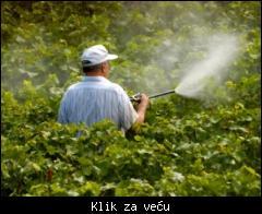 Profesionalno orezivanje i zastita vinove loze,voca i ruza povoljno! 1_tmb_76545374_05%20zastita-voca-vocnjak