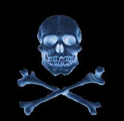 Week-end Pirates des Caraïbes.... en terre girondine 07.233