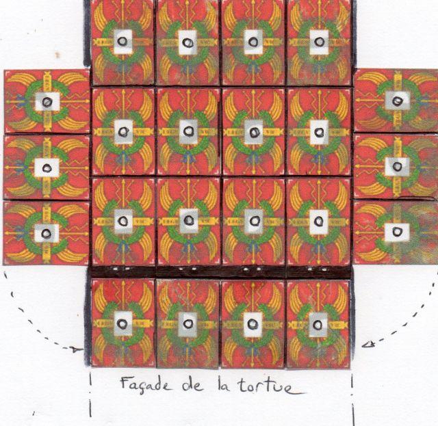 TORTUES ROMAINES 24.220