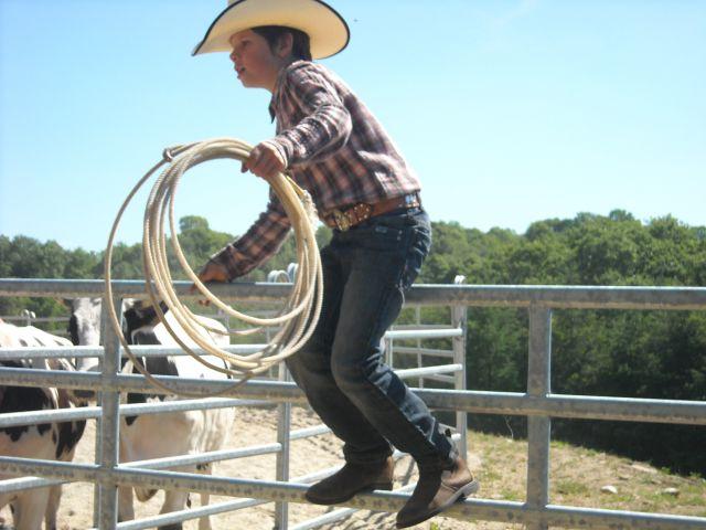 Stage travail du bétail 27.305