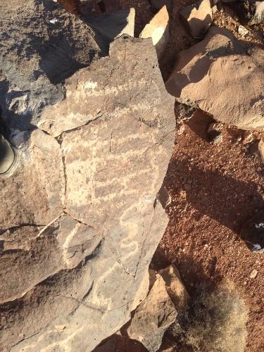 Recorrido de 1300 millas mas fotos de petroglificos de la mizma zona, misma montaña 0f4e05cde950d8d7f21710d5c7bb06e9o