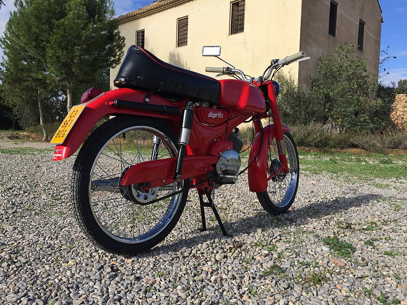 Nuevo proyecto: Moto Guzzi Dingo I 1f3678b396504b36d73f138953f12037o