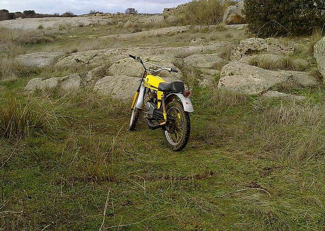 Un Minicross Super del 79 que retorna... 206e6716b567fdf2739e523c7fe14b75o