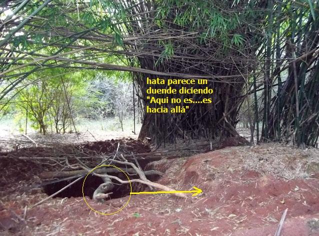 Fotos de búsqueda de un tesoro  8cbd1d6ef27fe941cc5ecebc854aebabo