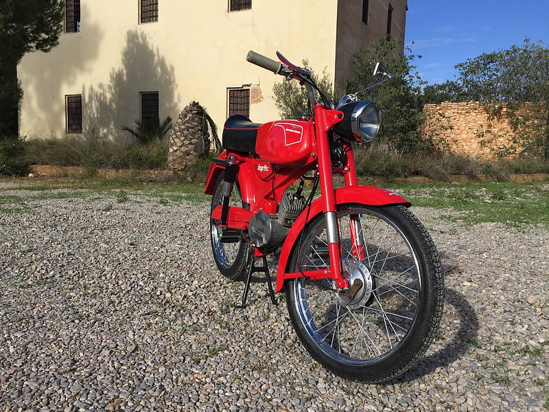 Nuevo proyecto: Moto Guzzi Dingo I F8c8a5011b387d4d841f7ecda590c03fo