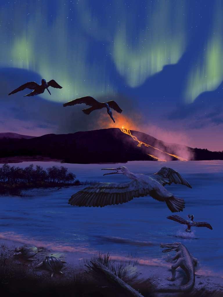Fossile : un oiseau à dents découvert dans l'Arctique canadien ! Par Jean-Luc Goudet 18cd17cadb_100152_oiseau-prehistorique-phanerozoicbay-environnement