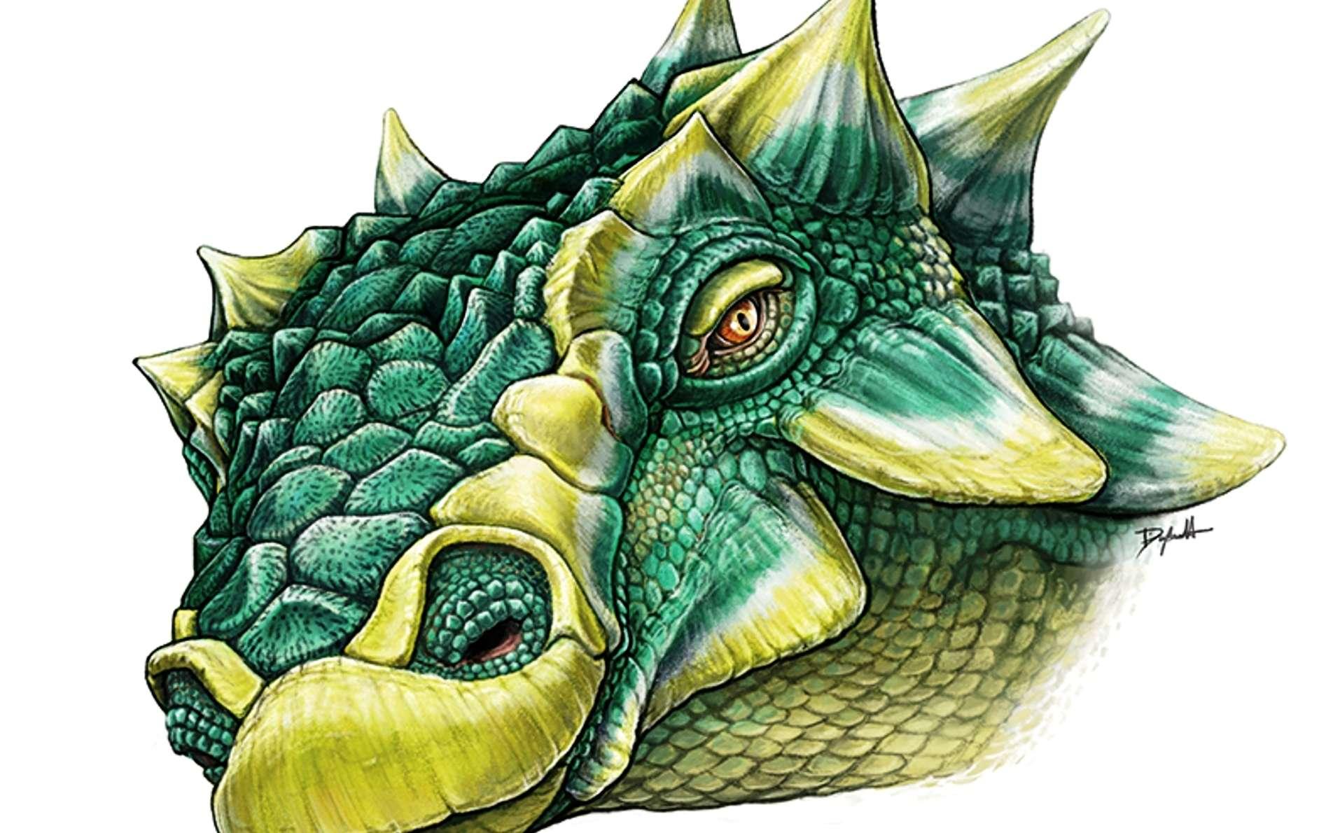 Dinosaure : des paléontologues ont retrouvé Zuul de S.O.S. Fantômes ! By Laurent Sacco 211f7652c2_106986_zuul-crurivastator-danielle-dufault-royal-ontario-museum