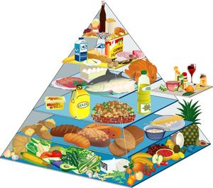 Comment bien se nourrir : la diététique pour une alimentation équilibrée et salutaire Pyramide_lanutrition