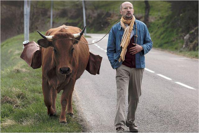 La vache. 073423