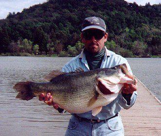 Le Black Bass O6btk3k4
