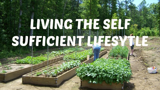 Wes Annac ~ Are You Ready for a Spiritual Revolution? Self-sufficient-lifestyle