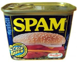 Hier ist Platz für SPAM! Spam-300x245
