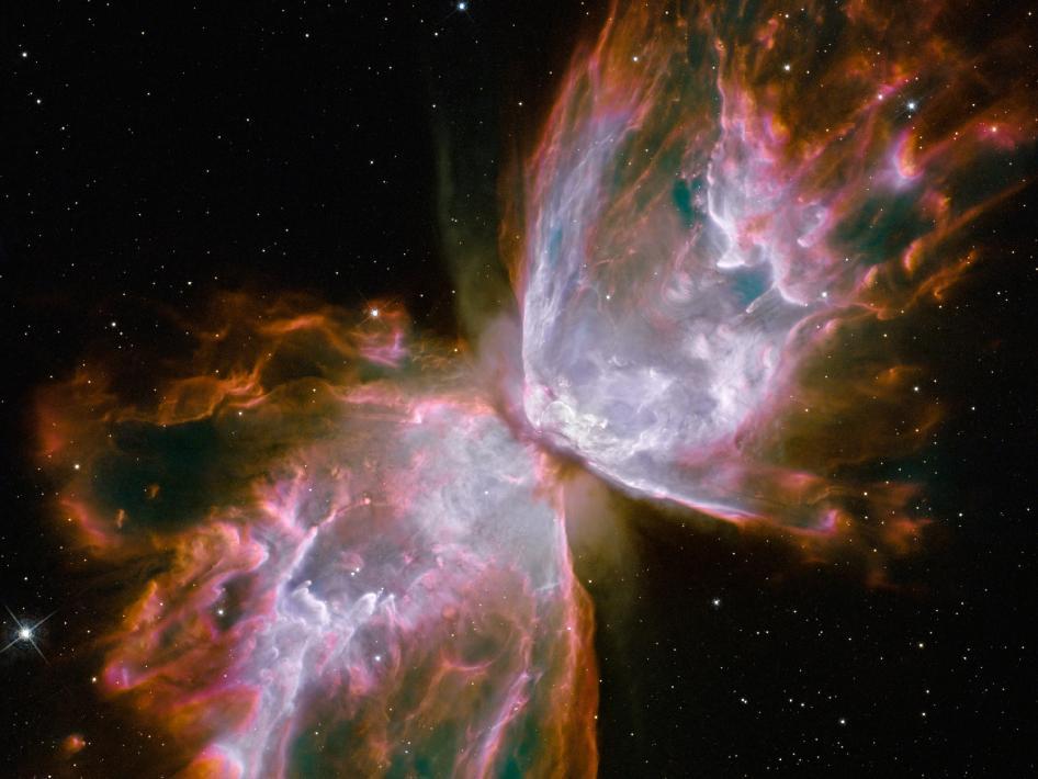 Ring Nebula  Butterfly