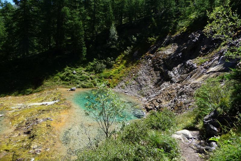 Le Sentier Botanique, Sentier Découvert - Départ du Lavachet 09