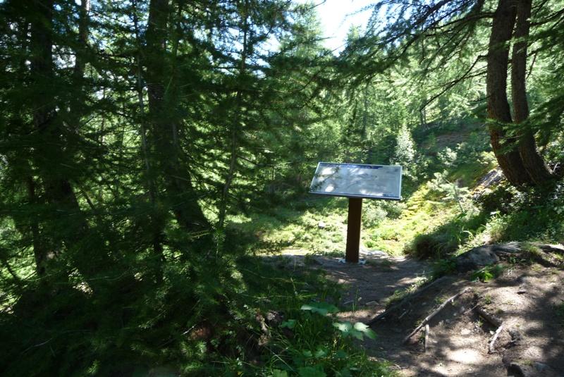 Le Sentier Botanique, Sentier Découvert - Départ du Lavachet 10