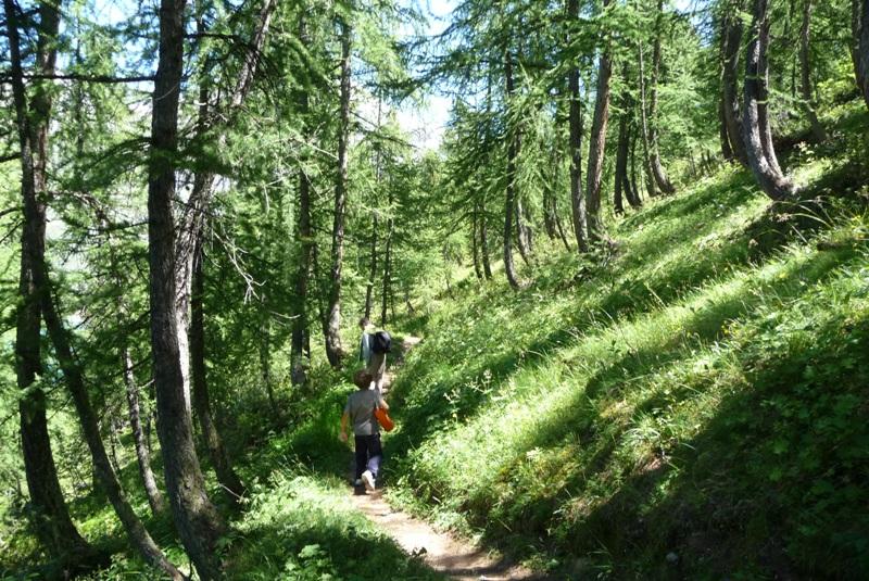 Le Sentier Botanique, Sentier Découvert - Départ du Lavachet 13