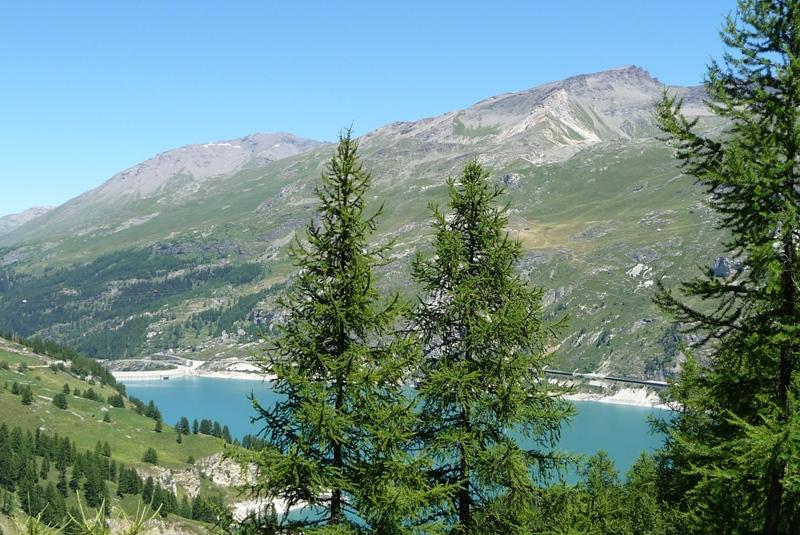 Le Sentier Botanique, Sentier Découvert - Départ du Lavachet 14