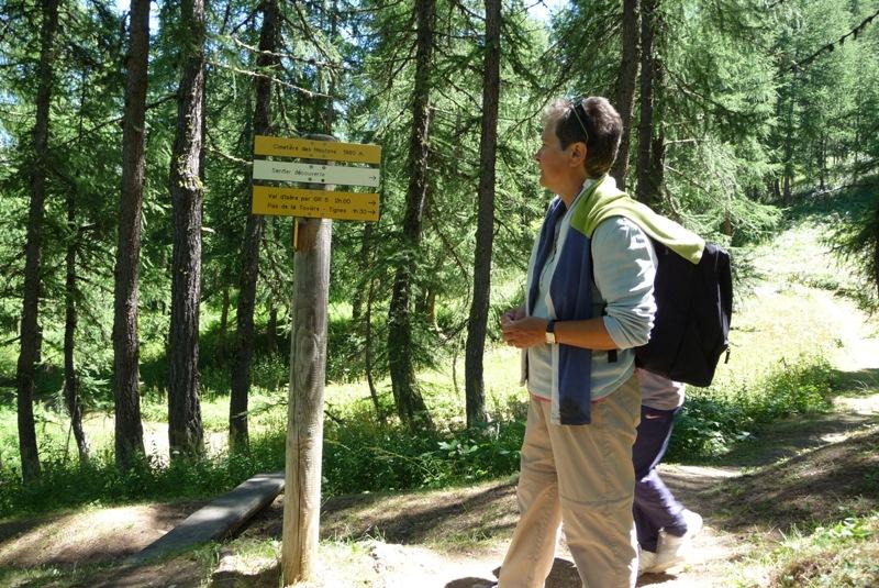 Le Sentier Botanique, Sentier Découvert - Départ du Lavachet 15