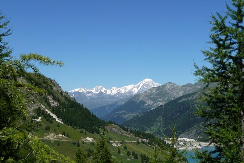 Le Sentier Botanique, Sentier Découvert - Départ du Lavachet 18