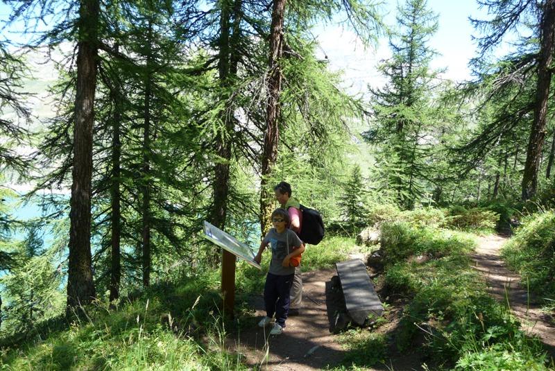 Le Sentier Botanique, Sentier Découvert - Départ du Lavachet 20