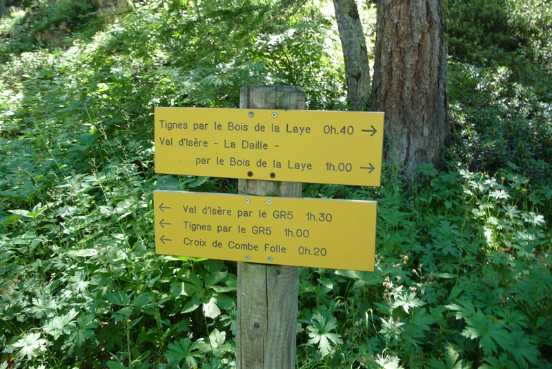 Le Sentier Botanique, Sentier Découvert - Départ du Lavachet 21