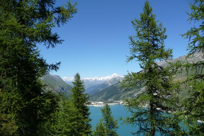 Le Sentier Botanique, Sentier Découvert - Départ du Lavachet 22
