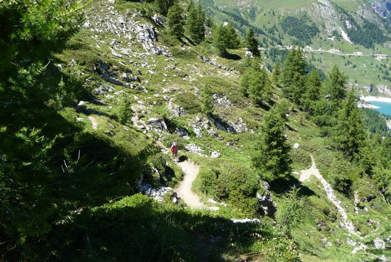 Le Sentier Botanique, Sentier Découvert - Départ du Lavachet 23