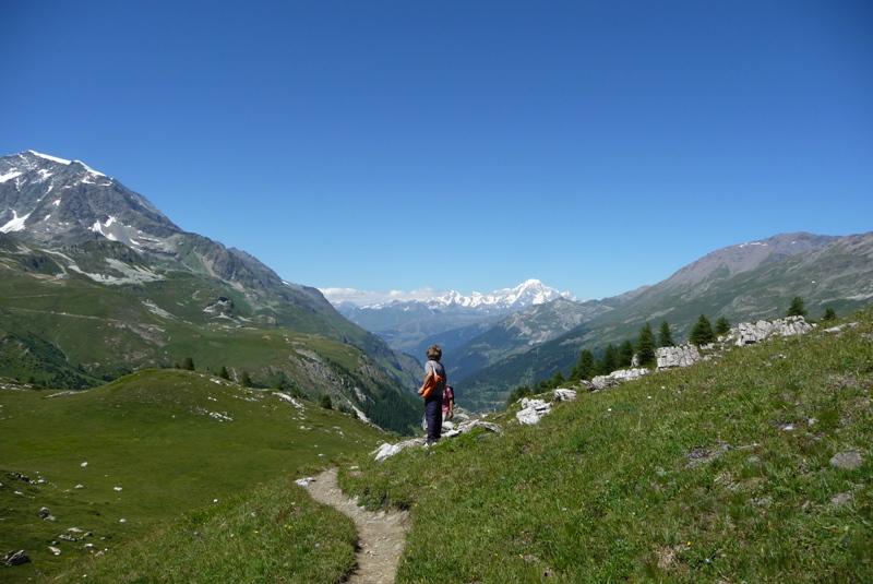 Le Sentier Botanique, Sentier Découvert - Départ du Lavachet 27