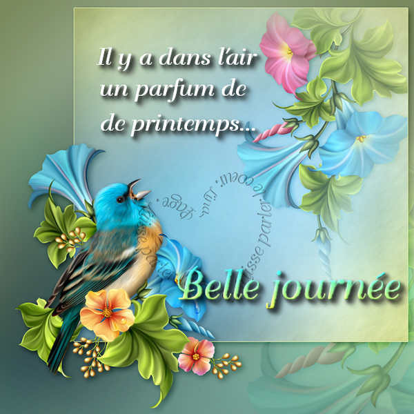 Bon Mercredi 086d2379