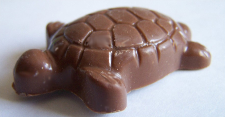 [Tradition] Saint Valentin /  White Day Chocolate-turtle
