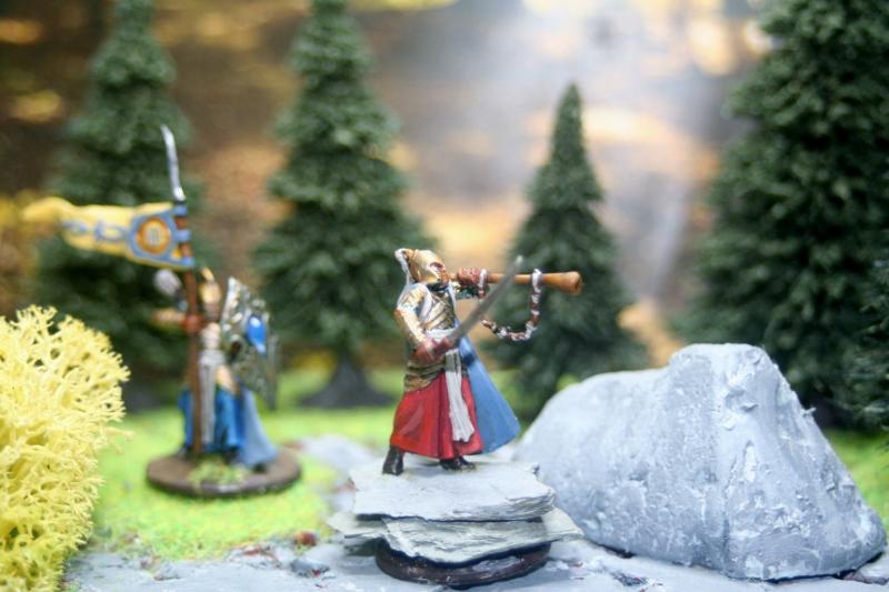 Aragorn et les 5 Armées - Rohan Kkjs5ewo