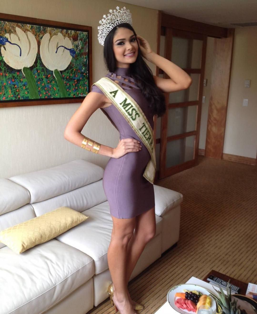 andrea rosales, miss earth venezuela 2015 (top 8 de miss earth 2015). Aug67ggx
