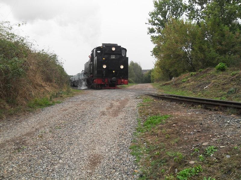 Rückblick auf das Jubiläum 25 Jahre Mansfelder Bergwerksbahn e. V. Manq5ndp